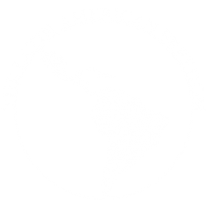 Reflexiones y noticias de la vida política en Latinoamérica